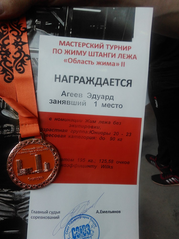 Resize of Заслуженные награды мастера спорта