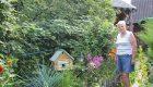 Шлейф кисейный цветущего сада